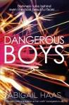 dangerousboy_paperback_1471119165_300 copy